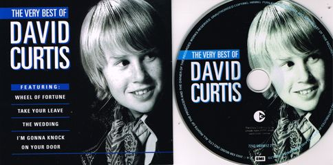 The Very Best Of David Curtis